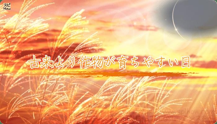新月の日は古来より作物が育ちやすい日