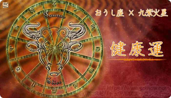 おうし座×九紫火星【健康運】