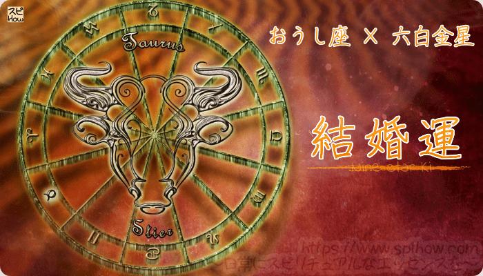 おうし座×六白金星【結婚運】