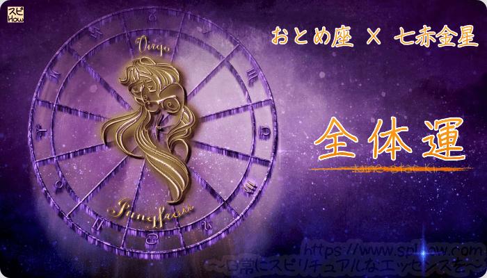 おとめ座×七赤金星【全体運】