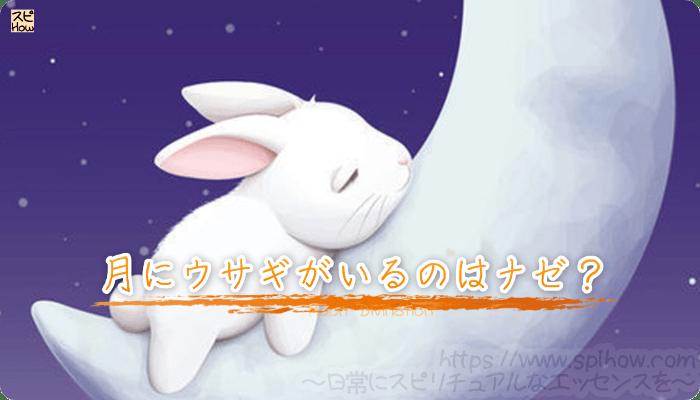 月にウサギがいるのはナゼ?