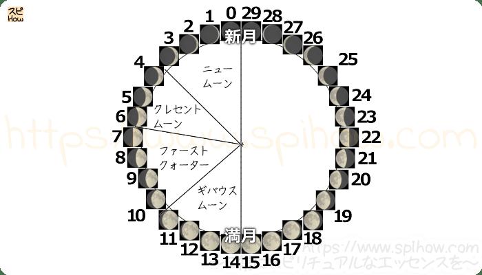 月齢サイクル図08