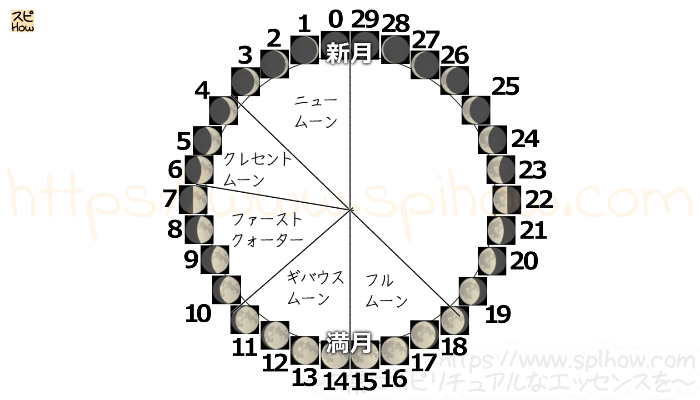 月齢サイクル図09