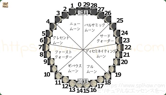 月齢サイクル図12