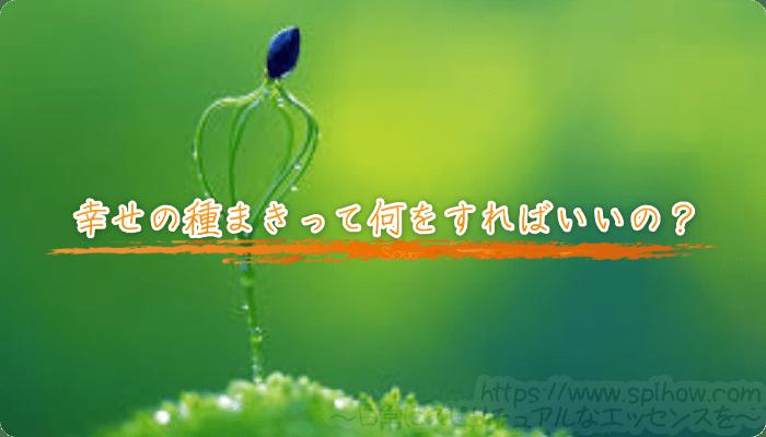 幸せの種まきって何をすればいいの?
