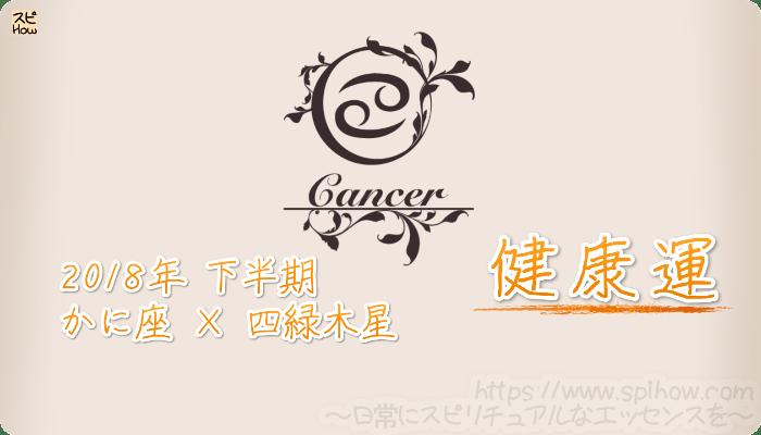 かに座×四緑木星の2018年下半期の運勢【健康運】