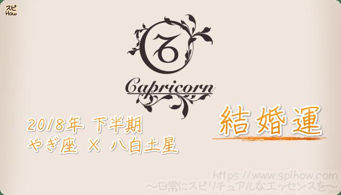やぎ座×八白土星の2018年下半期の運勢【結婚運】