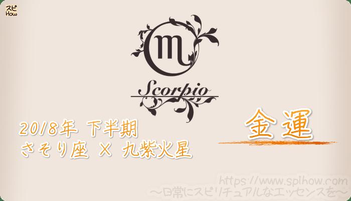 さそり座×九紫火星の2018年下半期の運勢【金運】
