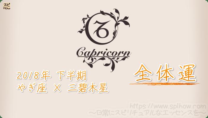 やぎ座×三碧木星の2018年下半期の運勢【全体運】