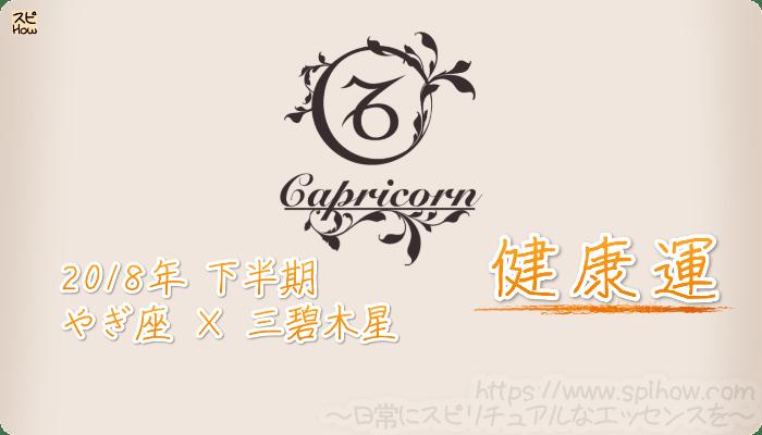やぎ座×三碧木星の2018年下半期の運勢【健康運】