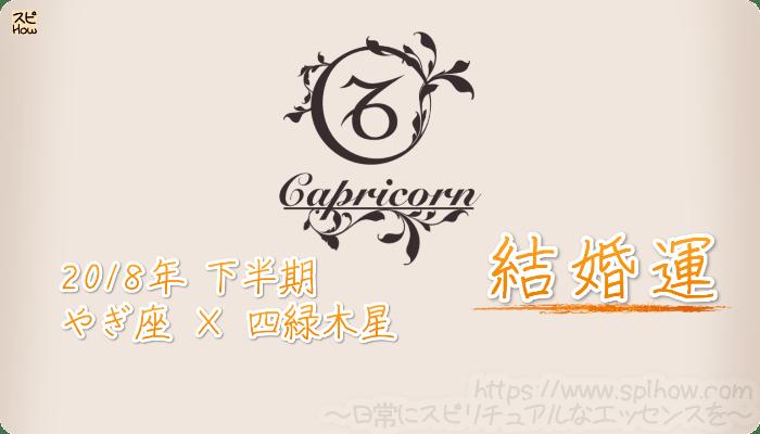 やぎ座×四緑木星の2018年下半期の運勢【結婚運】