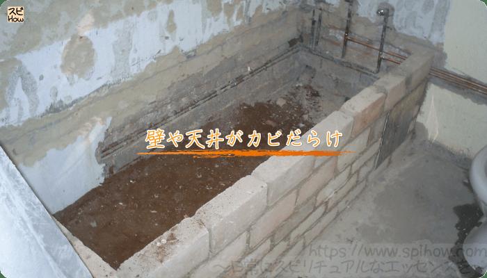 壁や天井がカビだらけ~
