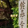 願いが叶うと有名な京都の鈴虫寺の説法を聞いて開運する方法