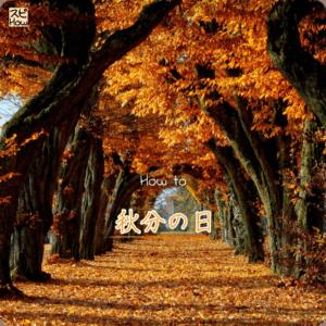 9月23日の秋分の日をスピリチュアル的に過ごす方法