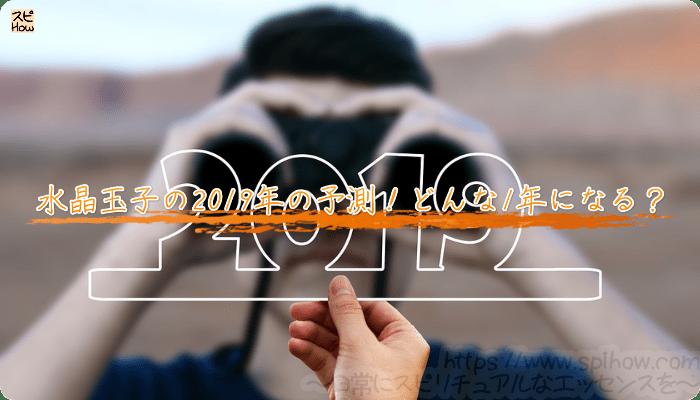 水晶玉子の2019年の予測!どんな1年になる?