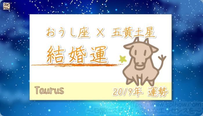 おうし座×五黄土星の2019年の運勢【結婚運】