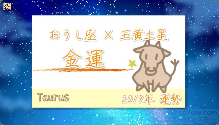 おうし座×五黄土星の2019年の運勢【金運】