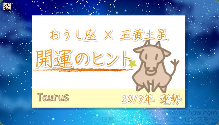 おうし座×五黄土星の【2019年をHAPPYに過ごすためのヒント】