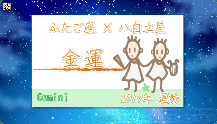 ふたご座×八白土星の2019年の運勢【金運】