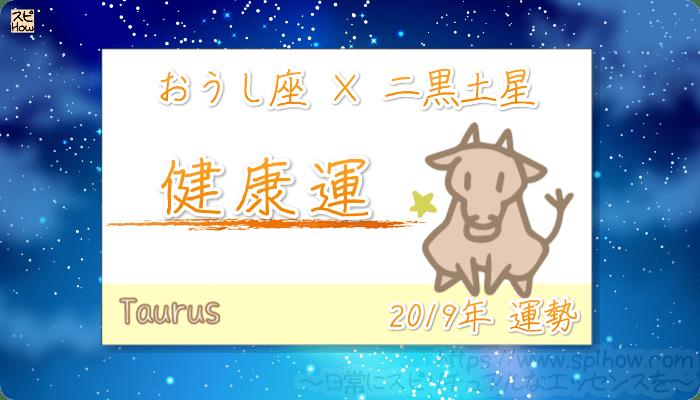 おうし座×二黒土星の2019年の運勢【健康運】