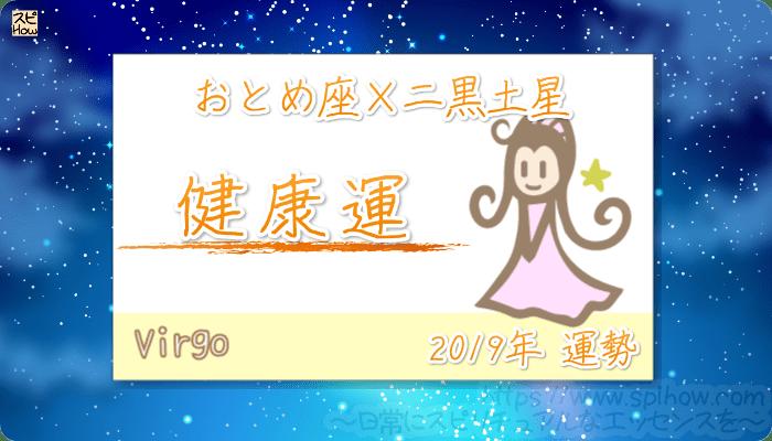 おとめ座×二黒土星の2019年の運勢【健康運】