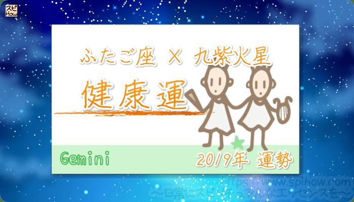 ふたご座×九紫火星の2019年の運勢【健康運】