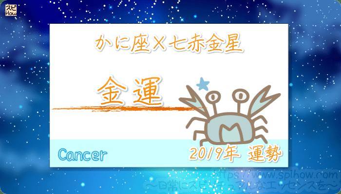 かに座×七赤金星の2019年の運勢【金運】