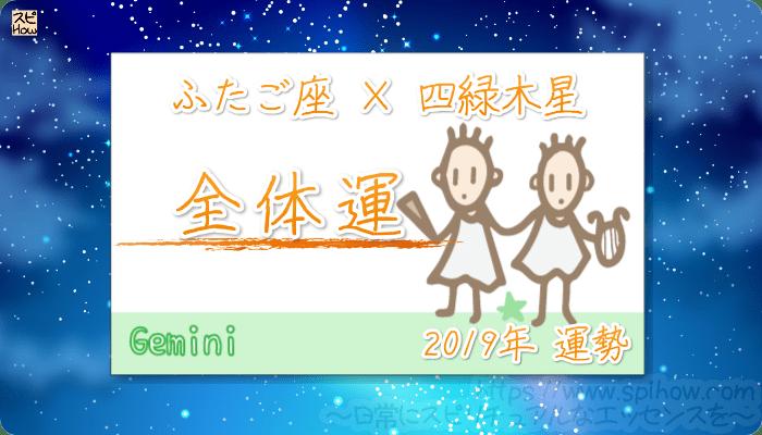 ふたご座×四緑木星の2019年の運勢【全体運】
