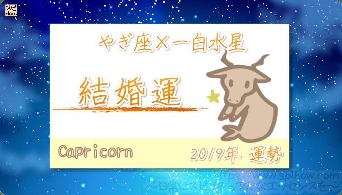 やぎ座×一白水星の2019年の運勢【結婚運】