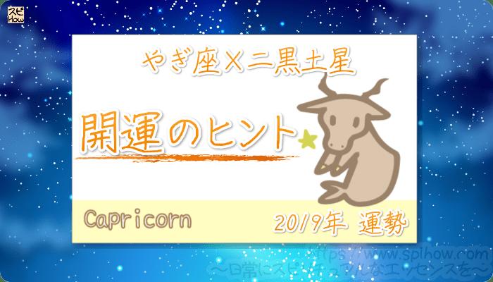 やぎ座×二黒土星の【2019年をHAPPYに過ごすためのヒント】