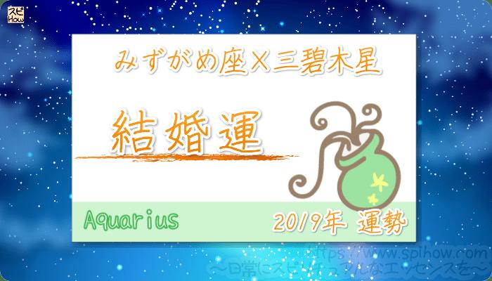 みずがめ座×三碧木星の2019年の運勢【結婚運】