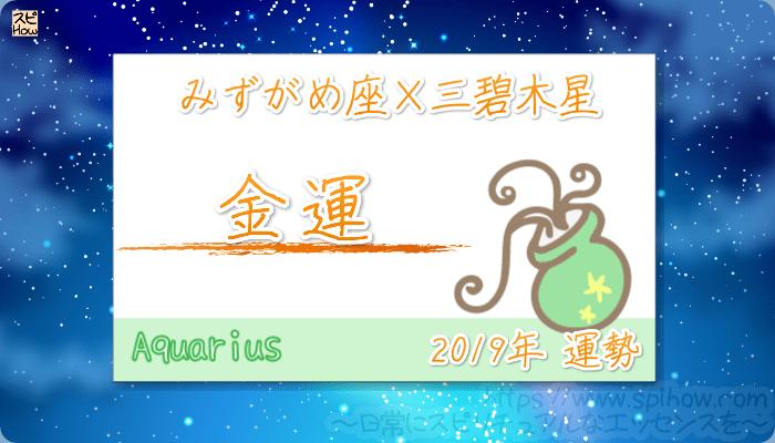 みずがめ座×三碧木星の2019年の運勢【金運】