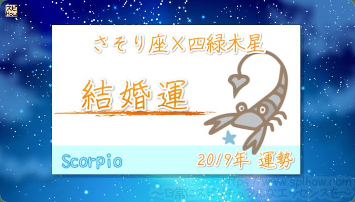 さそり座×四緑木星の2019年の運勢【結婚運】