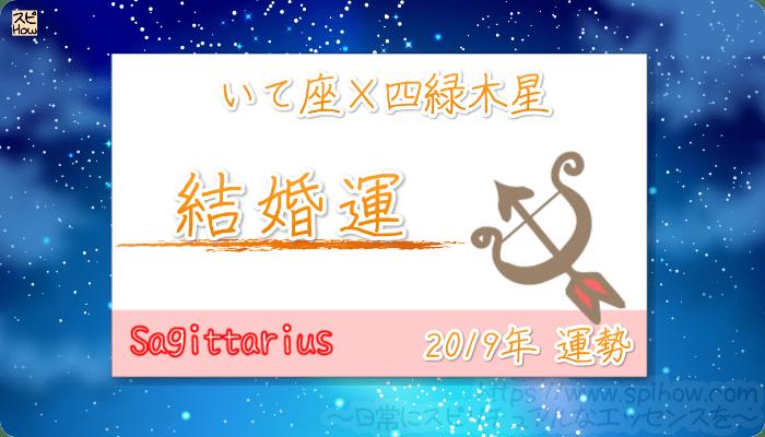 いて座×四緑木星の2019年の運勢【結婚運】
