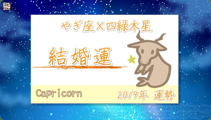 やぎ座×四緑木星の2019年の運勢【結婚運】