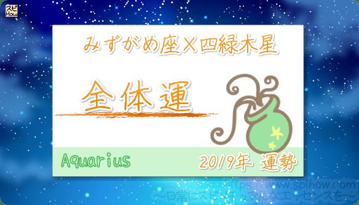 みずがめ座×四緑木星の2019年の運勢【全体運】