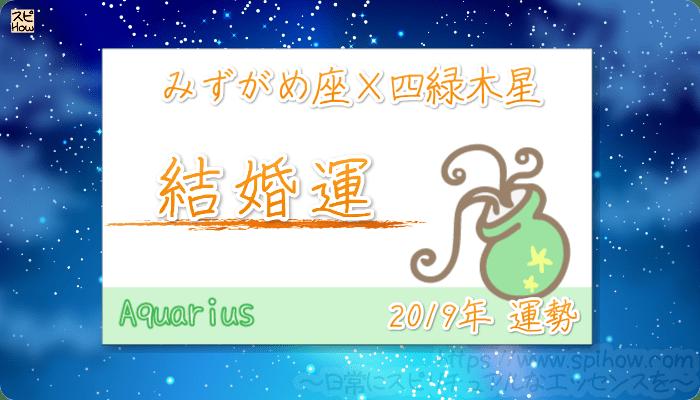 みずがめ座×四緑木星の2019年の運勢【結婚運】