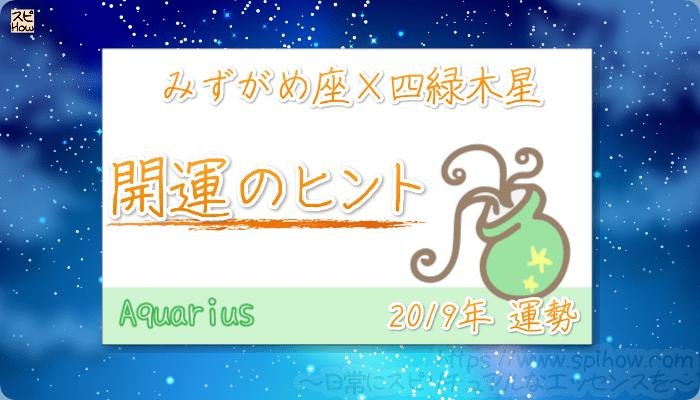 みずがめ座×四緑木星の【2019年をHAPPYに過ごすためのヒント】