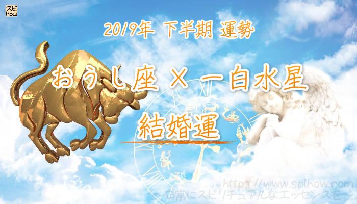 【結婚運】- おうし座×一白水星の2019年下半期の運勢