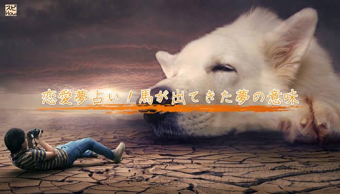 恋愛夢占い!犬が出てきた夢の意味のアイキャッチ画像