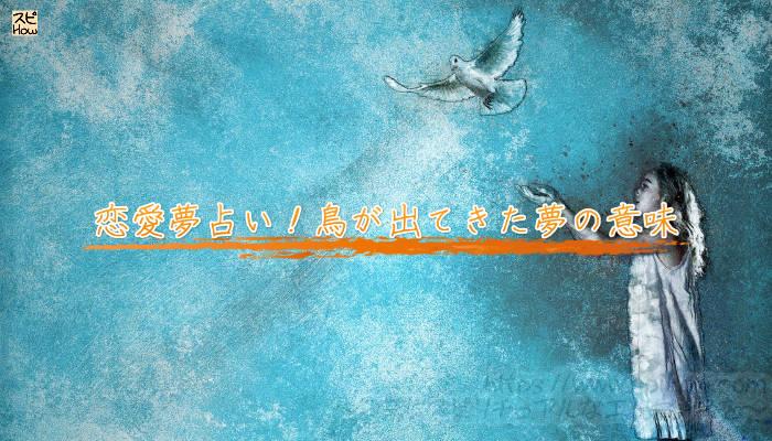 恋愛夢占い!鳥が出てきた夢の意味のアイキャッチ画像