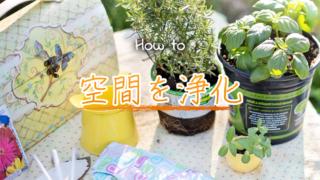植物を育てる事でスピリチュアル的にお部屋の空間を浄化する方法のアイキャッチ画像