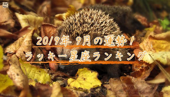 2019年9月のあなたの運勢!ラッキー星座ランキングのアイキャッチ画像