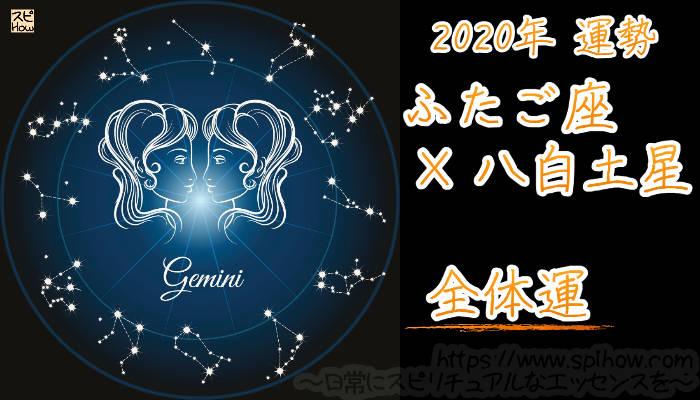 【全体運】ふたご座×八白土星【2020年】のアイキャッチ画像