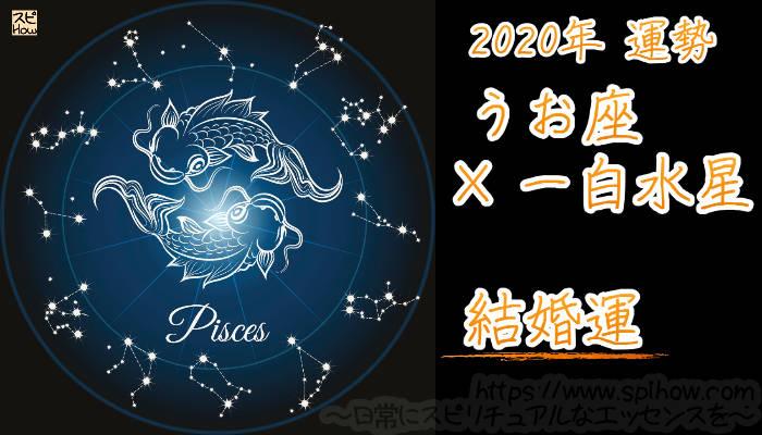 【結婚運】うお座×一白水星【2020年】のアイキャッチ画像