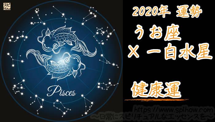 【健康運】うお座×一白水星【2020年】のアイキャッチ画像