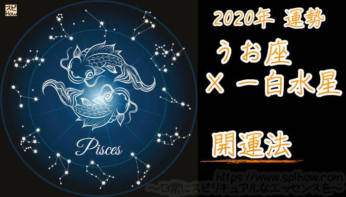 【開運アドバイス】うお座×一白水星【2020年】のアイキャッチ画像