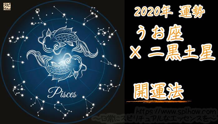 【開運アドバイス】うお座×二黒土星【2020年】のアイキャッチ画像