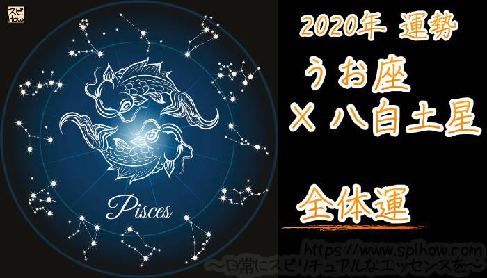 【全体運】うお座×八白土星【2020年】のアイキャッチ画像