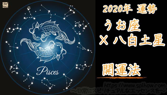 【開運アドバイス】うお座×八白土星【2020年】のアイキャッチ画像